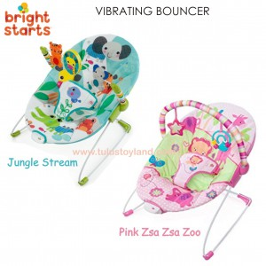Bright Starts - Vibrating Baby Bouncer