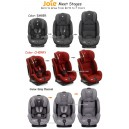 Joie – Meet Stages Car Seat
